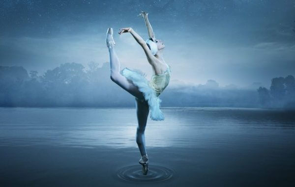 Swan Lake News & Events