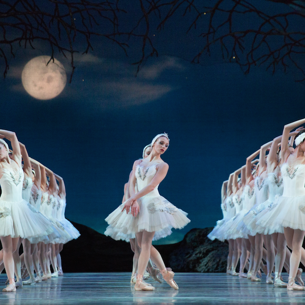 Swan Lake News & Events